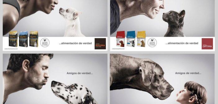 Cotécnica, ganador del Concurso de Publicidad EspeciesPRO