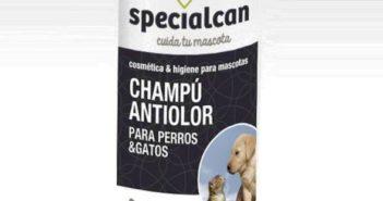 Champú antiolor Specialcan Black