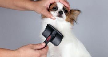 Herramientas de peluquería que hay que tener a mano