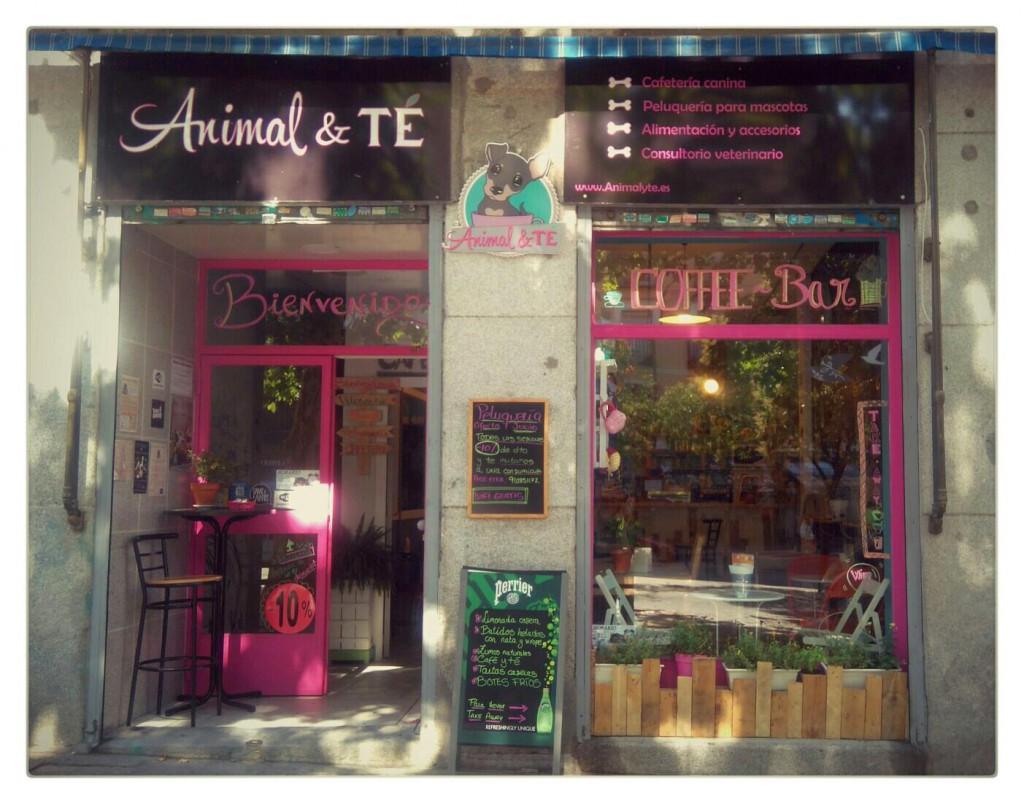 fachada animal&te