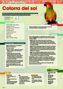 cotorra-especiespro-199