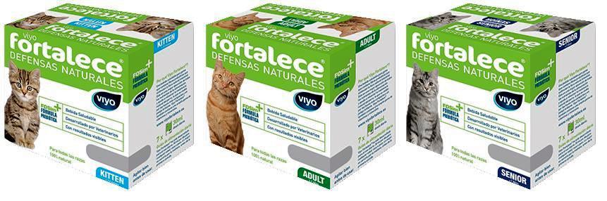 viyofortalece-gatos