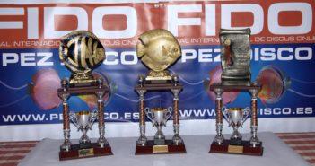 Siete años del concurso de peces disco online FIDO