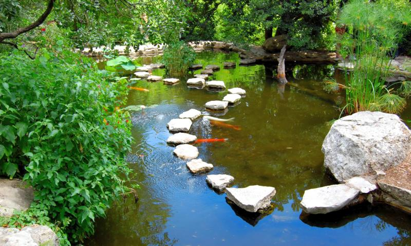 estanque primavera