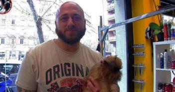 Cómo competir en campeonatos de peluquería canina