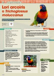 especiespro 205 lori