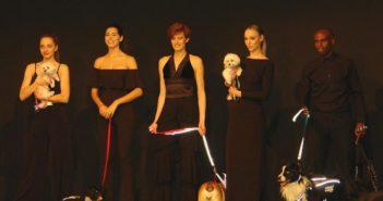 La Pasarela Boutique de Iberzoo+Propet, para conocer lo último en moda y accesorios para mascotas