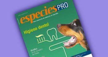 EspeciesPRO 207, julio-agosto 2017, ya online: Higiene dental mascotas