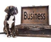 El secreto del mercado de las mascotas