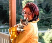 Cómo enseñar ejercicios de obediencia a un gato