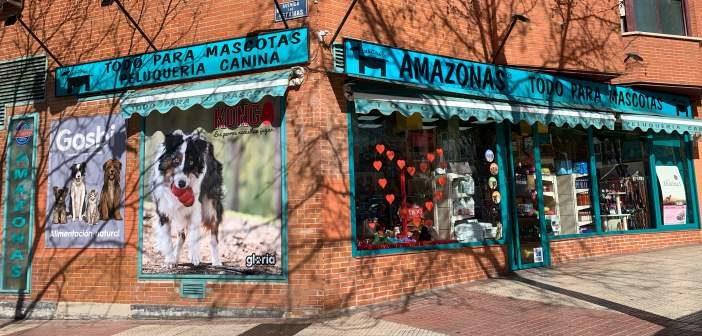Protagonista: Una selva amazónica en Madrid