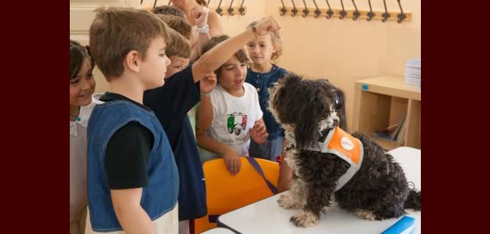 Perros de terapia acompañan a los niños en su vuelta al cole
