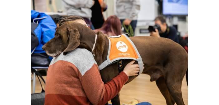 Beneficios de las Intervenciones Asistidas con perros en estudiantes