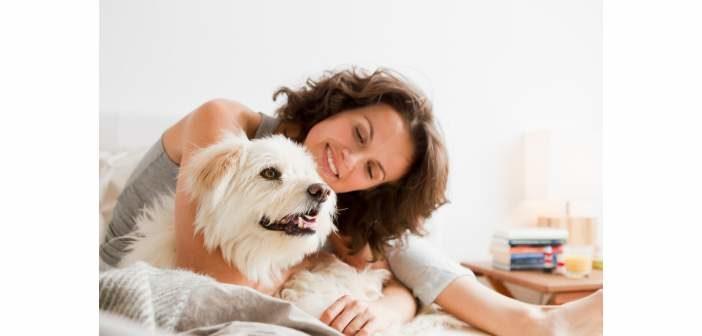 Formarse en bienestar animal