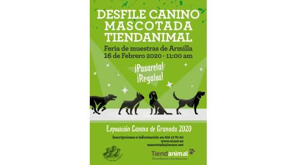 Exposición y desfile canino en Granada