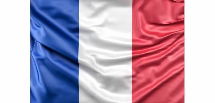 Datos de ventas en Francia