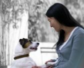 El vínculo humano-animal se traduce en beneficios físicos y mentales