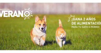 Royal Canin busca la mascota del verano